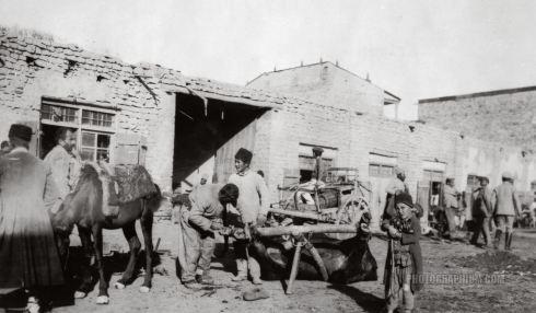 man_shoeing_ox_in_market_square._yerevan_armenia._1918-1919