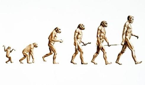 1309000465_evolution