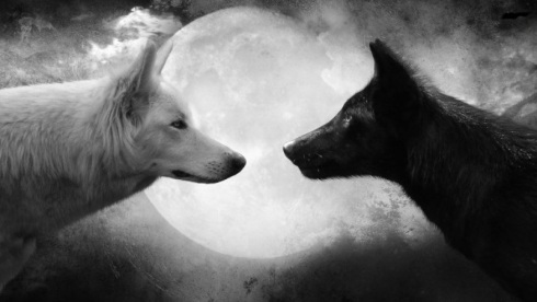 wolf_wallpaper_black_and_white_by_lmmphotos-d7kyjih